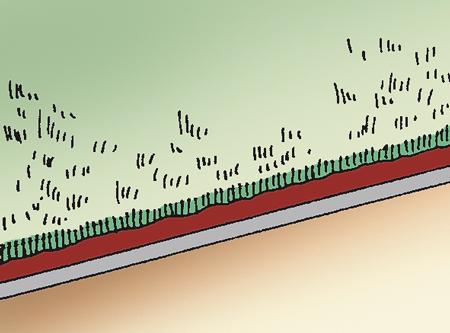 moquette agugliata
