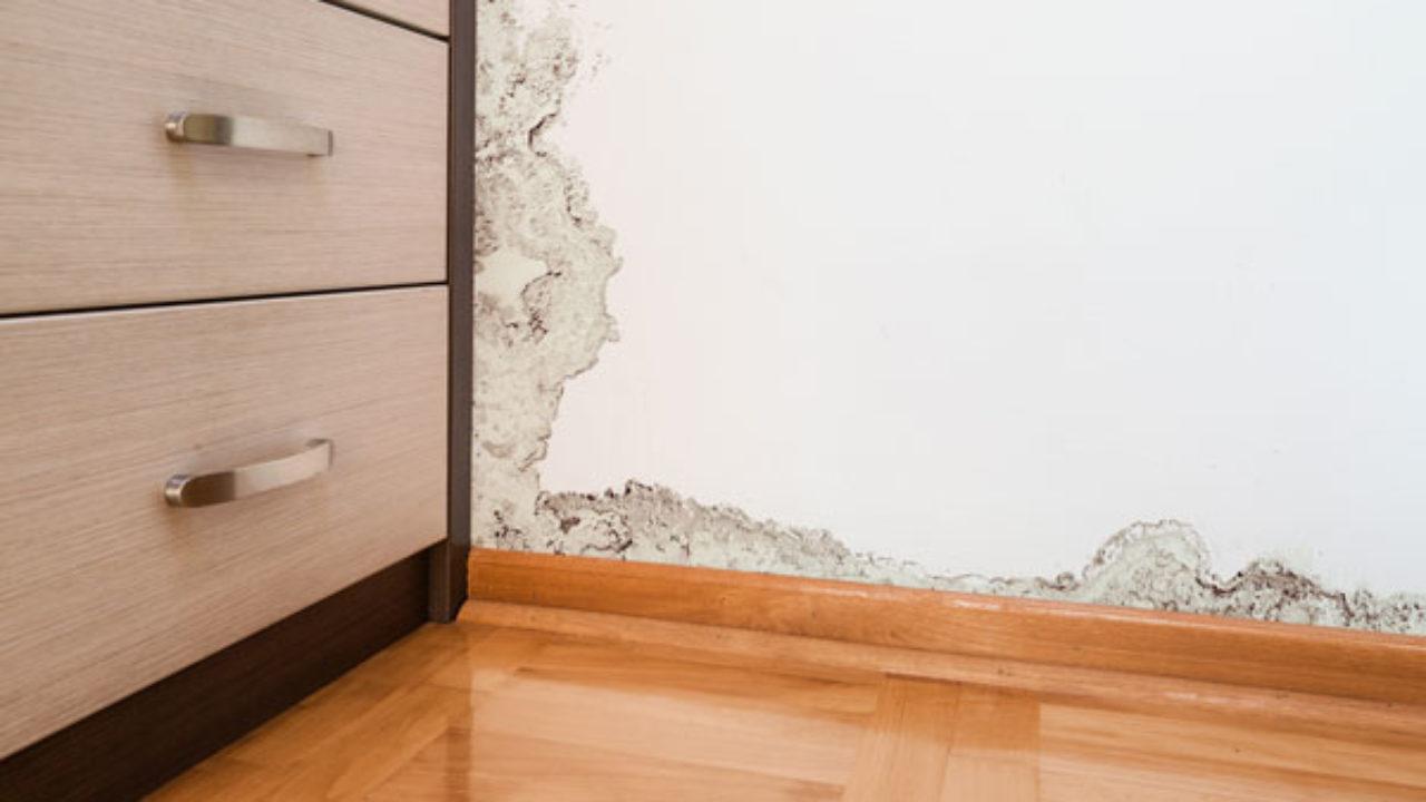 Scale Di Risalita Casa rimedi umidità di risalita - rifare casa