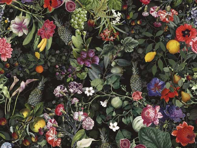 decorazione botanica